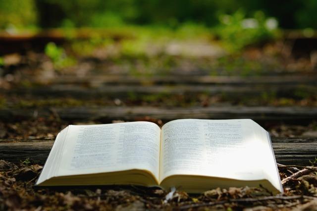 bible-3370021_1280